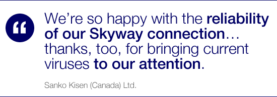 We're so happy with the reliability of our Skyway connection… thanks, too, for bringing current viruses to our attention.